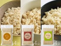 発芽まえちゃん玄米 食べ比べセット 420g × 12袋