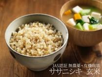 ササニシキ 玄米 2.5kg
