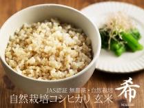自然栽培コシヒカリ 希 玄米 2.5kg