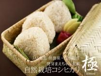発芽まえちゃん玄米 自然栽培コシヒカリ 極 420g
