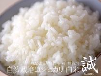 自然栽培コシヒカリ 誠 白米 2.5kg