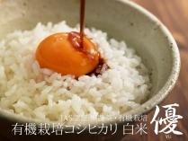 コシヒカリ 白米 優 2.5kg
