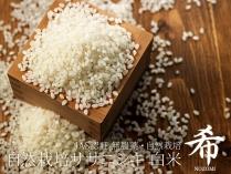 自然栽培ササニシキ 希 白米 2.5kg