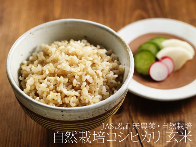 release-shizen-koshihikari-genmai